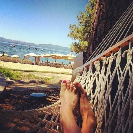 Hyatt Regency Lake Tahoe Resort, Spa and Casino:                   Hammock by the beach
