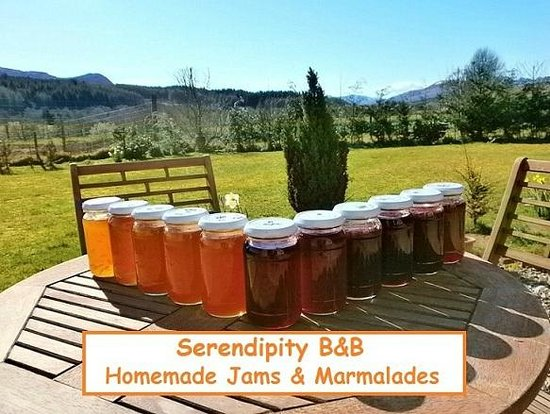 Serendipity Bed and Breakfast: Homemade Serendipity B&B Jams & Marmalades