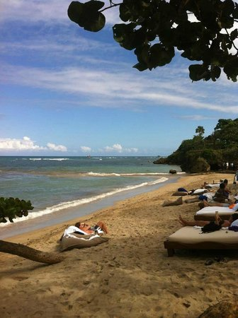 Cofresi Palm Beach & Spa Resort:                   Serenity Beach