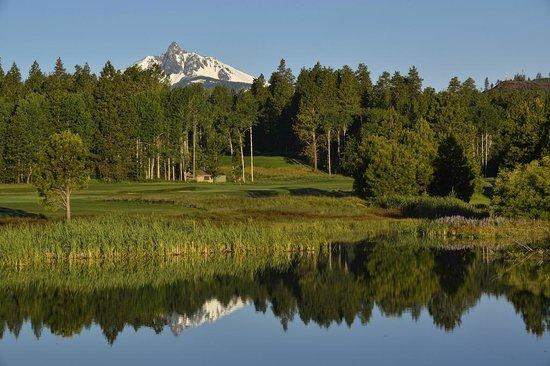 Black Butte Ranch Golf Club: #3 Green at Glaze Meadow Golf Course