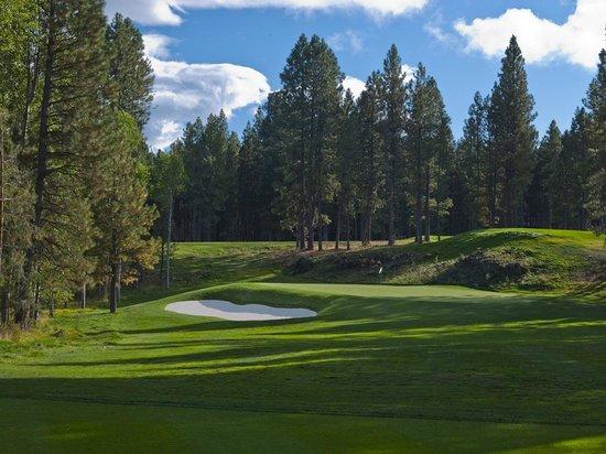 Black Butte Ranch Golf Club: #8 Green at Glaze Meadow