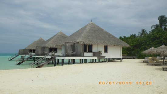 Gangehi Island Resort:                   Water Villas