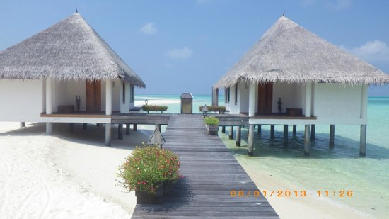 Gangehi Island Resort:                   Water Villas 31, 32