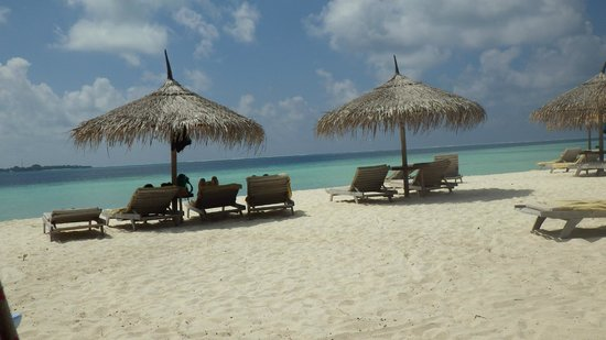 Gangehi Island Resort:                   Beach