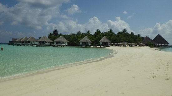 Gangehi Island Resort:                   View from the long sand strand