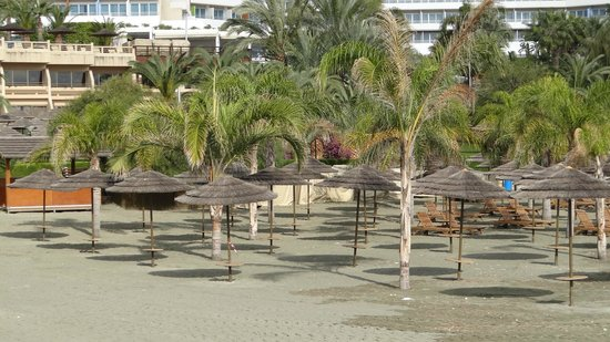 Four Seasons Hotel: The beach area in January