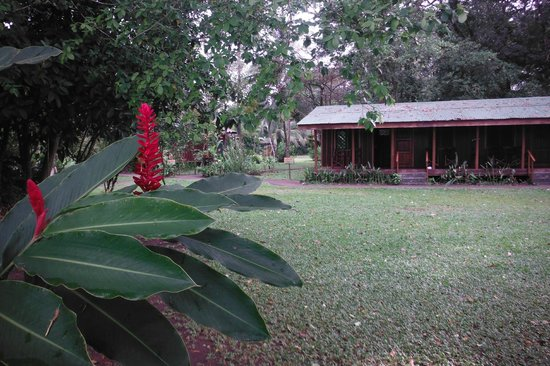 Laguna Lodge Tortuguero:                   typical view of lodge accommodations