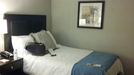 Clarion Hotel & Conference Center at Exton: Wyndham Garden Exton bed2