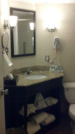 Clarion Hotel: Wyndham Garden Exton bathroom sink2