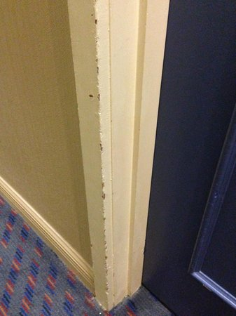 Mercure Auckland :                   Every door jamb looks like this throughout the 4th floor