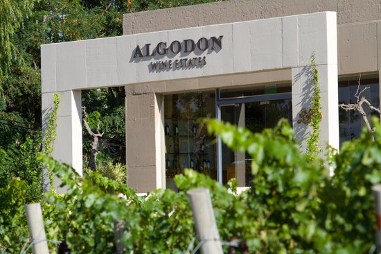 Algodon Winery