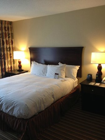 Aksarben Suites Omaha: King Bed