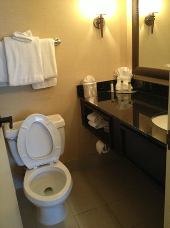 Aksarben Suites Omaha: Bathroom
