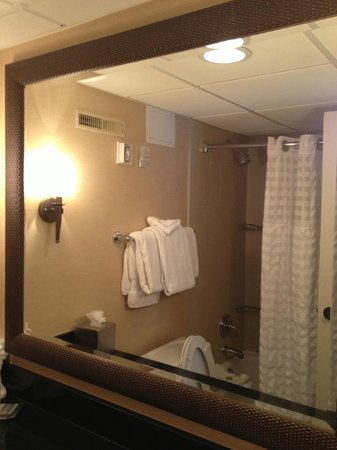 Aksarben Suites Omaha: Large Mirror in Bathroom