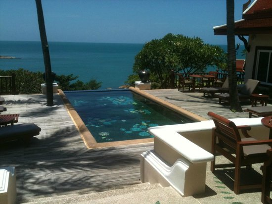 Q Signature Samui Beach Resort:                   shared pool