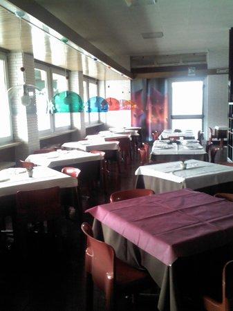 Hotel Arca :                   5