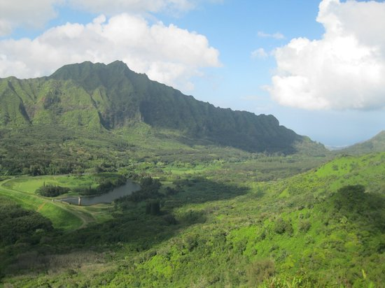 Manoa Falls: View from the end of Pauoa Flats trail.
