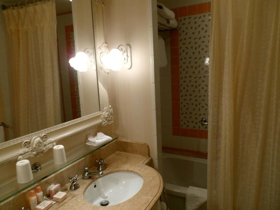 Disneyland Hotel:                   Hotel Bathroom