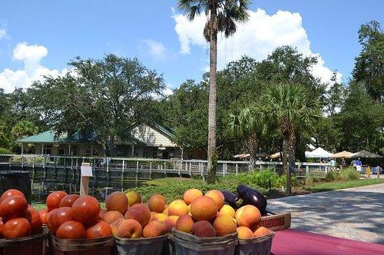 Fernandina Farmer's Market