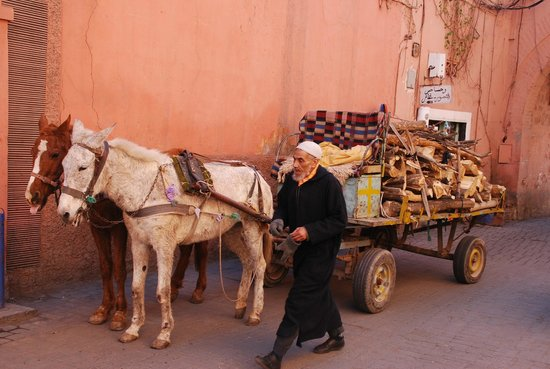 Riad Limouna:                   La médina