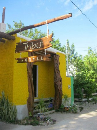 Tribu Hostel:                   Reception