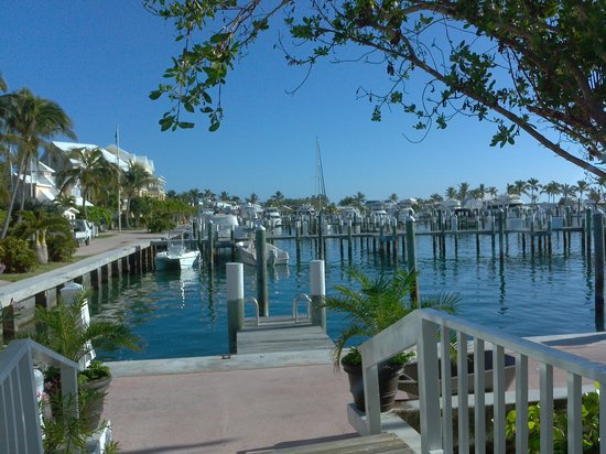 Abaco Beach Resort and Boat Harbour Marina: Marina view