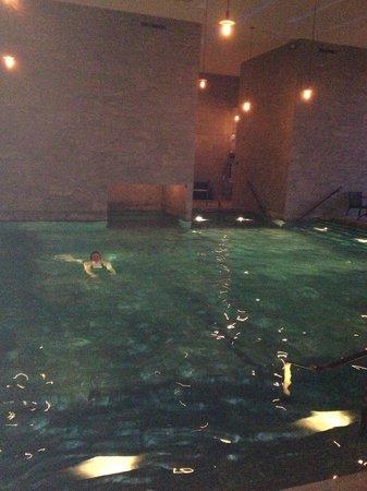 Hotel Vejlefjord:                   Large indoor pool