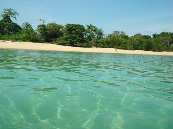 Insel Contadora, Panama:                   Isla Mogo Mogo, paseo con Coral Dreams