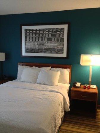 Residence Inn Tampa Sabal Park/Brandon:                                     bedroom