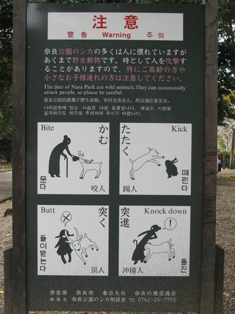 Nara Park: signboards...funny though..