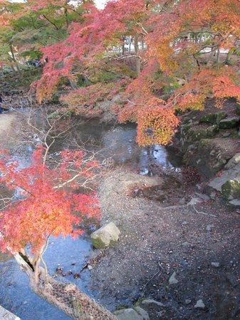 Nara Park: red...