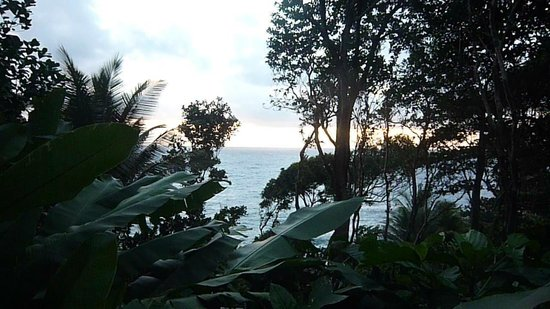 Jungle Bay, Dominica: view from room