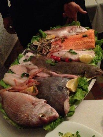 Le Goeland:                   fresh fish presented daily