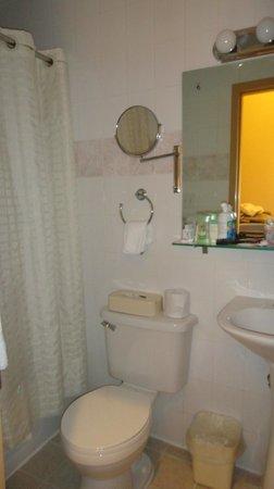 Econo Lodge Times Square:                   Banheiro