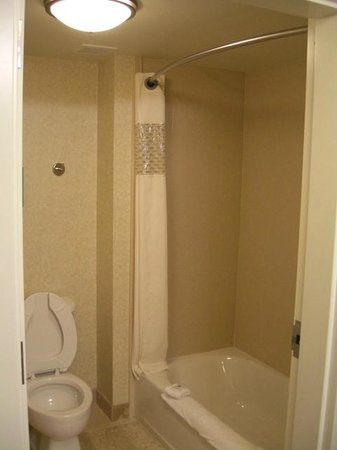 Hampton Inn & Suites Fort Myers-Estero/FGCU: Nice shower strength