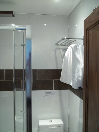 Dylan Apartments Earls Court:                   Shower room