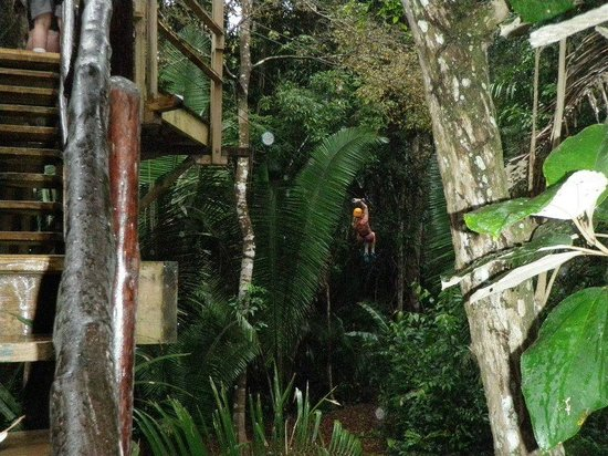 Cave Tubing & Zip Line with Explore Belize Caves:                   Belize Zipline