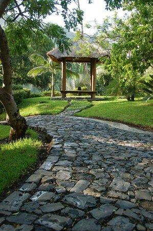 Cielo Vista Hotel & Spa : garden view