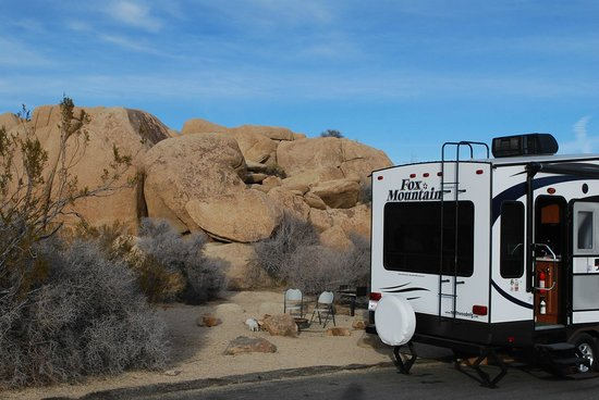 Jumbo Rocks Campground:                   our campsite