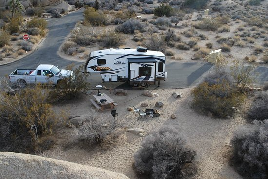 Jumbo Rocks Campground Picture