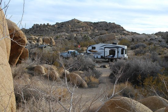 Jumbo Rocks Campground 사진