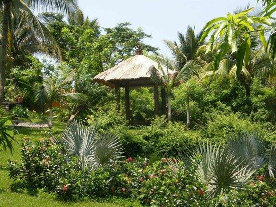Cielo Vista Hotel & Spa : Garden