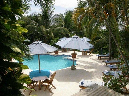 Cielo Vista Hotel & Spa : Hotel Pool