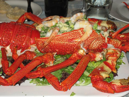 Forest Walks Lodge: Tasmanian crayfish salad