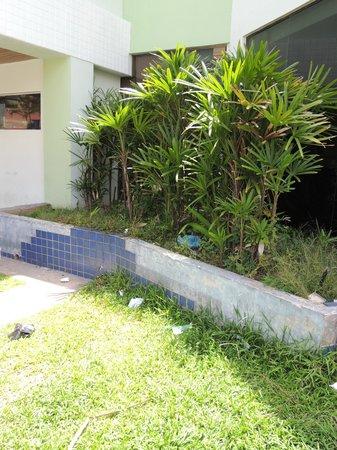 Canasvieiras Praia Hotel:                   ingreso