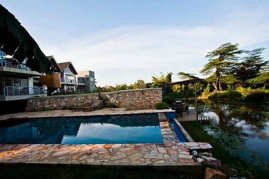 View of buildings from pool picture of yellow haven for Knebel design pool ug