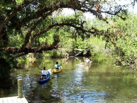 Koreshan State Historic Site: Kayaking in the backyard