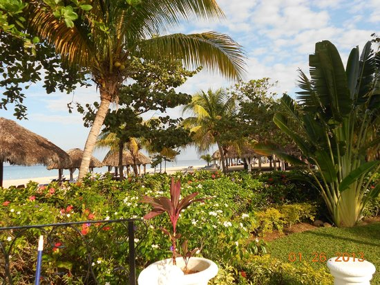 Beaches Negril Resort & Spa: Lush grounds