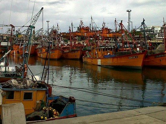 Puerto de Mar del Plata: Muy colorido!!!
