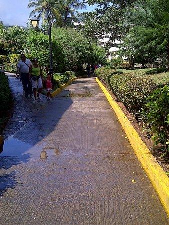 Hesperia Playa El Agua:                   caminerias